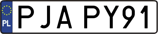 PJAPY91