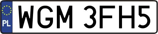 WGM3FH5.png